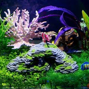 Aquarium Hideout Resin Decoration Ornament