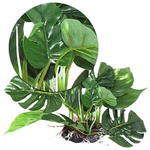 Artificial Green Plant Plastic for Aquarium