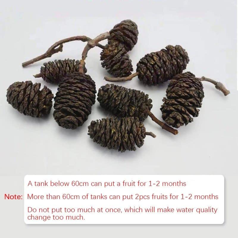Aquarium Natural Lower PH Adjusting Black Elm Fruit